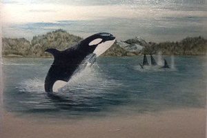 A painting of a killer whale leaping from the water is just one of the motifs available in the theme rooms at Glenpark Pet Hotel
