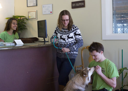 Glenpark Pet Hotel's friendly staff