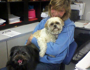 A soft-hearted staff member at Glenpark Pet Hotel has extra cuddles for needy guests